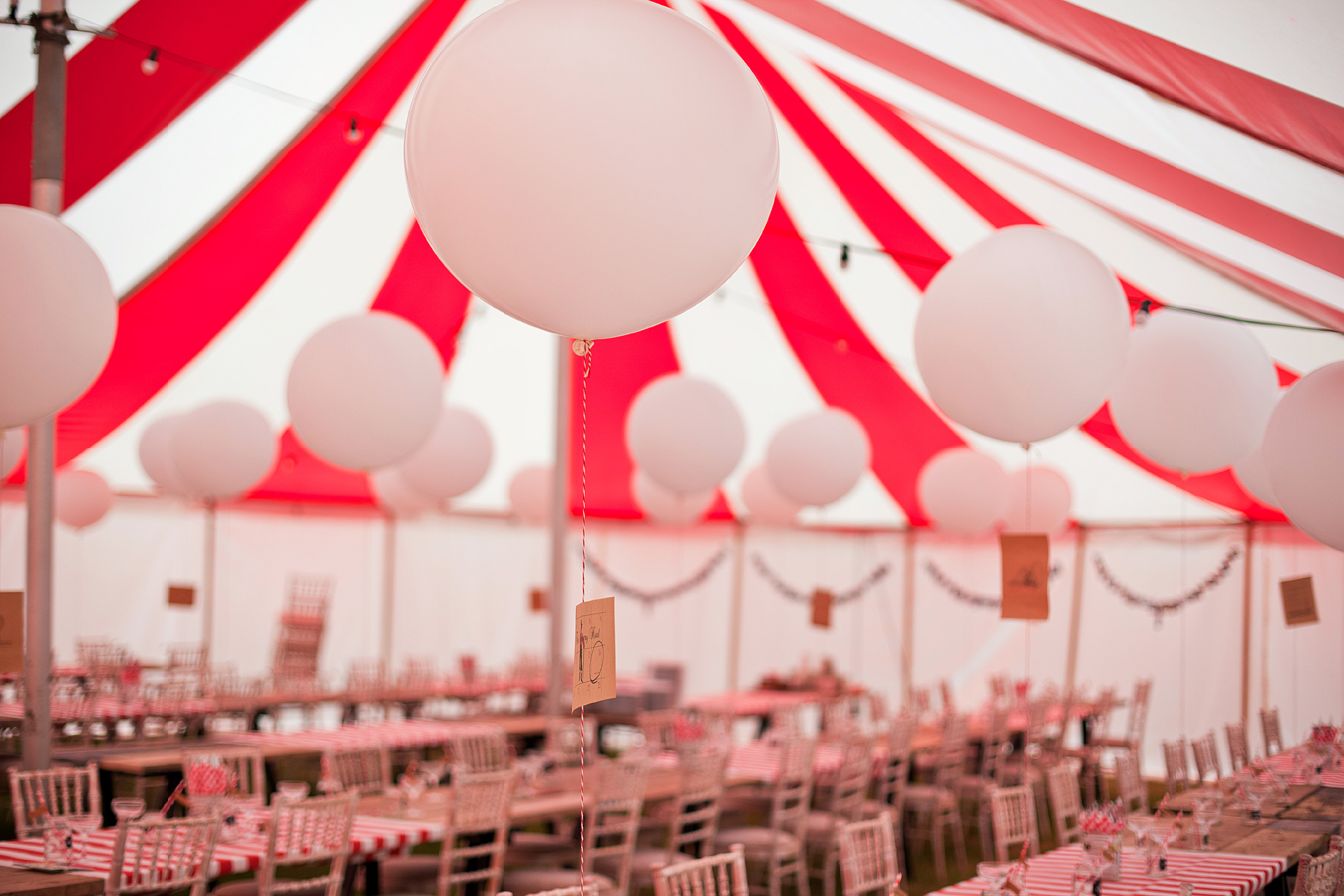 circus wedding devon